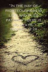 Pathway:Righteouness