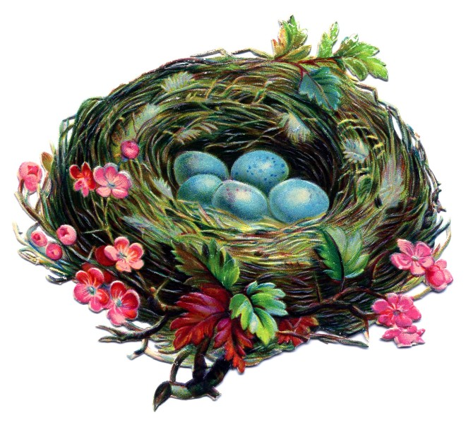 nest victorian image graphicsfairy009c