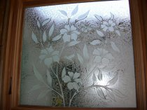 etched-decorative-glass-window-hibiscus-flower-hummingbird