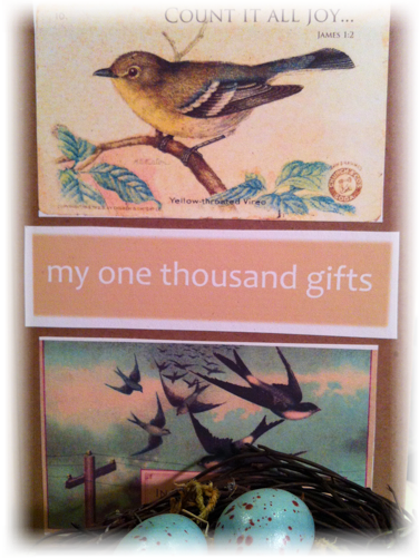 One Thousand Gifts Journal/Nest