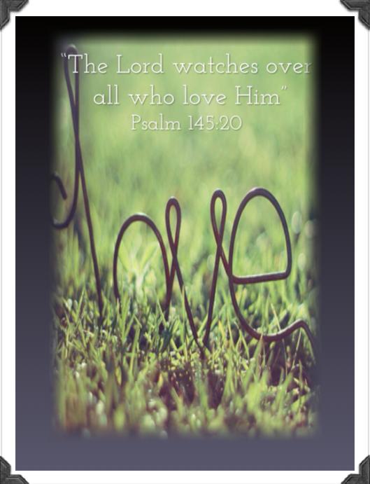 Psalm 145:20