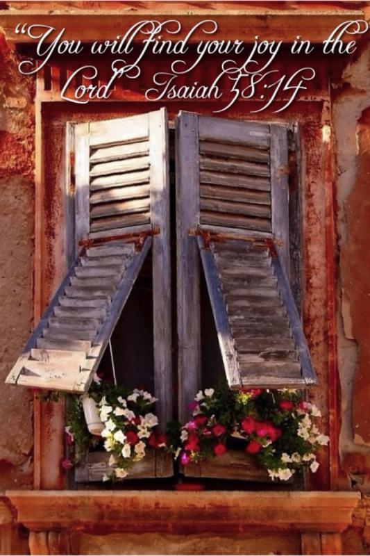 Window:Joy