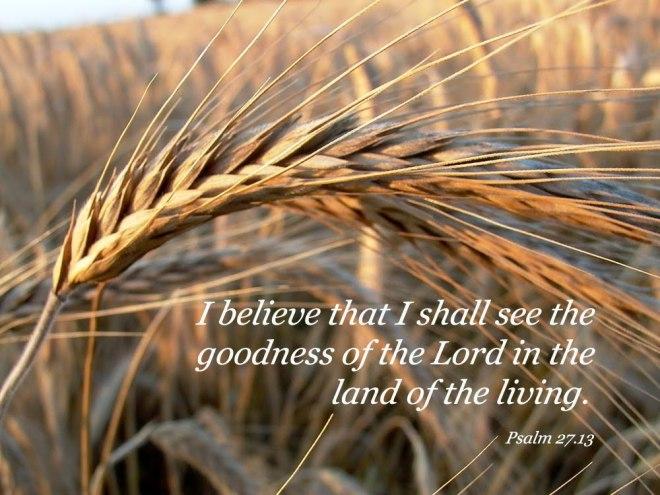 psalm27_13