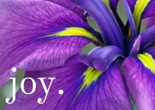 iris-joy